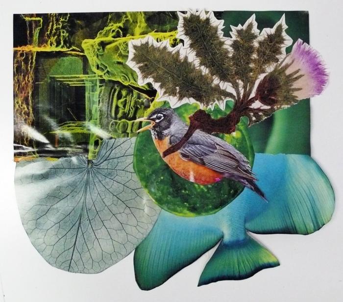 Robin thistle